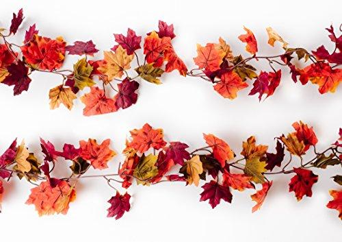 CraftMore Autumn 70 Inch Garland - 2 ()
