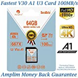 Amplim 64GB SDXC SD Card (V30 A1 U3 UHS-I Class 10 Extreme Pro) 64 GB Ultra High Speed 667X 100MB/s UHS-1 XC Flash Memory Storage for HD/UHD/4K Videos - Camera, Computer, Camcorder. 64G New Feb 2018