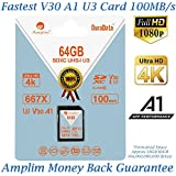 Amplim 64GB SDXC SD Card (V30 A1 U3 UHS-I Class 10 Extreme Pro) 64 GB Ultra High Speed 667 X 100MB/s UHS-1 XC Flash Memory Storage for HD/UHD/4K Videos - Cameras, Computers, Camcorders. 64G New 2018