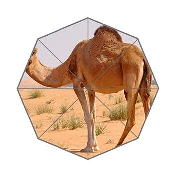Flipped Summer Y Paraguas de Verano con Diseño de Camello Desértico y Estampado Personalizado.