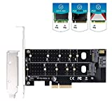 Dual M.2 PCIe Adapter, M2 SSD NVME (m-Key) or SATA (b-Key) 22110 2280 2260 2242 2230 to PCI-e 3.0 x4 Host Controller Expansion Card for Desktop PCI Express Slots