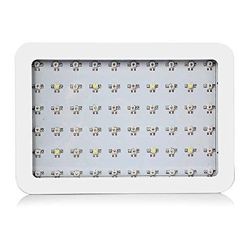 1000W LED Grow Light Panel Lamp Full Spectrum Indoor Plant For Vegetable Flower by Fun Living