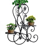 3-tier Elegant Classical Design Plant Stand with 3 Holders Potted Plant Rack by ZHCH (Black)