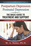 Postpartum Depression / Postnatal Depression: The Basic Guide to Treatment and Support