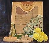 Mesquite Wood Incense - 100 Bricks Plus Burner - Incienso De Santa Fe