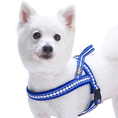 Blueberry Pet 4 Colors Soft & Comfy 3M Reflective Jacquard Padded Dog Harness, Chest Girth 25.5 - 31.5, Palace Blue, M/L, Adjustable Harnesses for Dogs