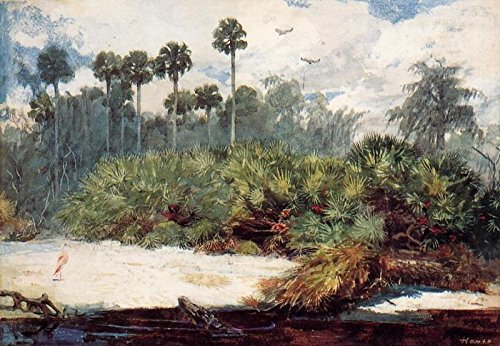 Homer Winslow Florida Jungle 100% Hand Painted Replica Oil Paintings 20X28 Inch by B-Arts