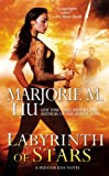 Labyrinth of Stars (A Hunter Kiss Novel)