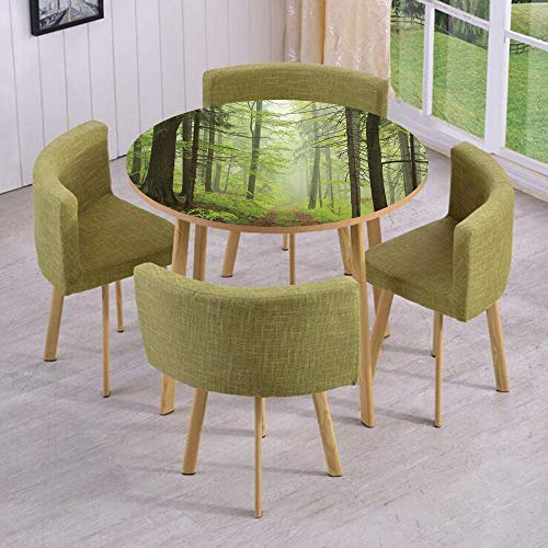 iPrint Round Table/Wall/Floor Decal Strikers/Removable/Trail Trough Foggy Alders Beeches Oaks Coniferous Grove Hiking Theme/for Living Room/Kitchens/Office Decoration