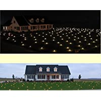 Lawn Lights 21WW10 Illuminated Outdoor Decoration, LED, Christmas, Warm White by Lawn Lights