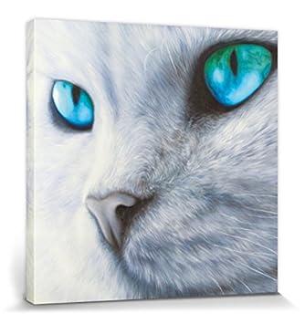 1art1® Gatos - Ojos Brillantes Cuadro, Lienzo Montado sobre Bastidor (40 x 40cm): Amazon.es: Hogar