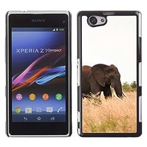 Be Good Phone Accessory // Dura Cáscara cubierta Protectora Caso Carcasa Funda de Protección para Sony Xperia Z1 Compact D5503 // Elephant Africa Nature Summer Tusk