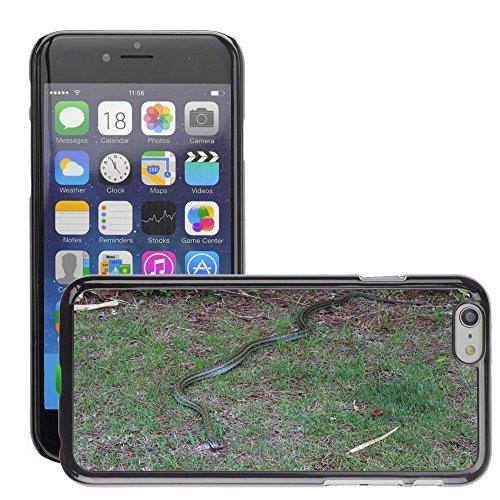 "Bild Hart Handy Schwarz Schutz Case Cover Schale Etui // M00135278 Snake seminiferi Gras Tier // Apple iPhone 6 PLUS 5.5"""