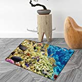 Best Carpet Sweepers With Naturals - Ocean Bath Mats Carpet Colorful Life Natural Environment Review