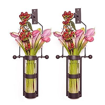 Danya B Wall Mount Hanging Cylinder Vase with Metal Cradle and Hook - Set of 2