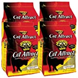 Dr. Esleys Precious Cat Attract Scoopable Clumping Cat Litter, (4 pack)