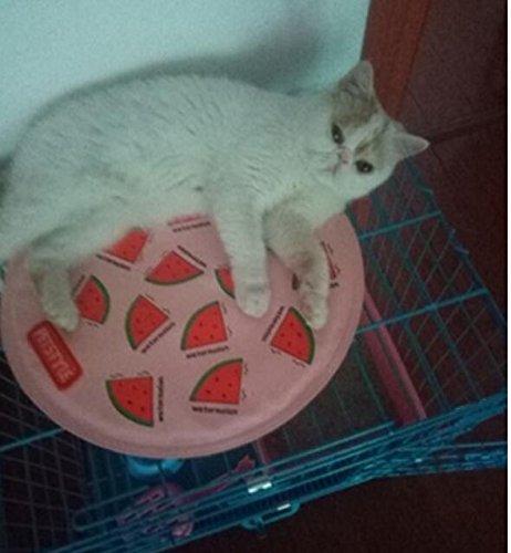 ZHJZ - Alfombrilla de Felpa Suave para casa de Perro, Impermeable, para Refrigeración, Diseño de Frutas, Alfombrilla de Cama para Mascotas para el Verano ...