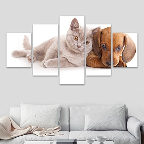 [Medium] Premium Quality Canvas Printed Wall Art Poster 5 Pieces / 5 Pannel Wall Decor Animal Cat Painting Dog Painting, Home Decor Pictures - With Wooden Frame