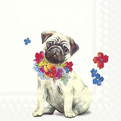 Mops Carlino 20 Servilletas por Paquete Servilleta Ambiente Motivo Pug Perro