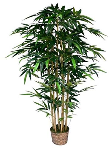 Tree Bamboo Tabletop Silk - Laura Ashley 6 Foot Tall High End Realistic Silk Bamboo Tree with Wicker Basket Planter