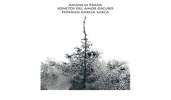 Sonetos del Amor Oscuro de Federico García Lorca de Amancio Prada ...