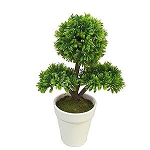 Fiore Petite Green Tree in Plastic Pot 12 count box 89
