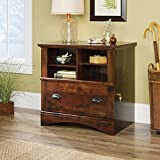 Sauder Harbor View Lateral File in Curado Cherry
