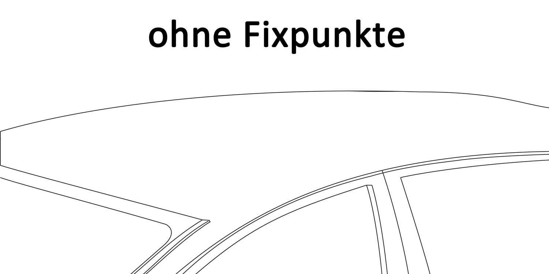 Dachbox VDPCA320 320Ltr carbonlook Alu Relingtr/äger Aurilis Original kompatibel mit Dacia Duster mit Reling 5 T/ürer 2014-2017