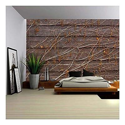 Orange Vines Draping on a Wood Panel Wall...