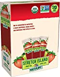 Stretch Island Strawberry Company Organic Fruit Strips, 0.49 Ounce (Pack of 120)