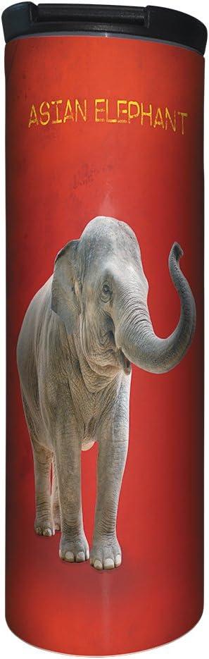 African Savannah Elephant 17 oz Tree-Free Greetings BT20703 Barista Stainless Steel Travel Coffee Mug//Cup
