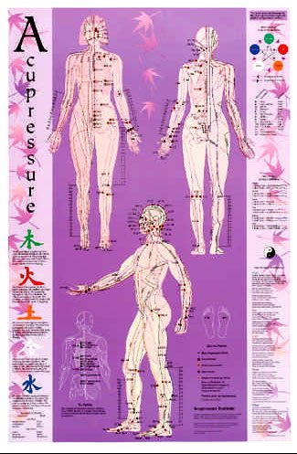 Acupressure Point Reference AC3505L -
