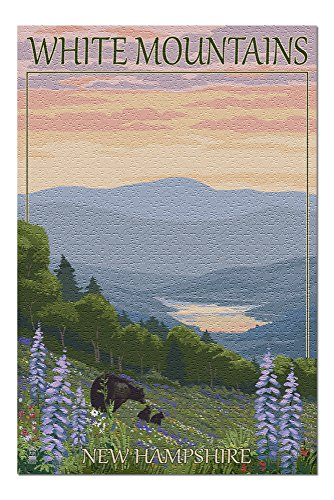 White Mountains, New Hampshire - Bear and Cubs with Flowers (20x30 Premium 1000 Piece Jigsaw Puzzle, Made in USA!)