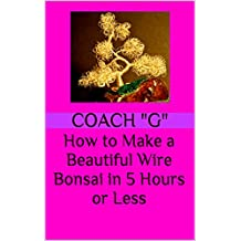 How to Make a Beautiful Wire Bonsai in 5 Hours or Less