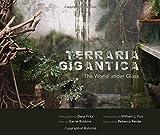 Terraria Gigantica: The World under Glass