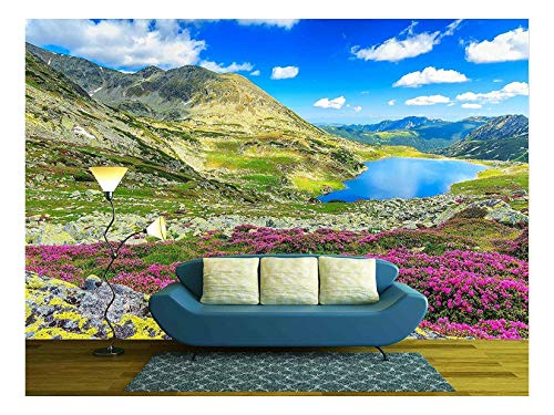 wall26 - Glacier Lake,High Mountains and Stunning Pink Rhododendron Flowers,Retezat National Park,Carpathians,Romania,Europe - Removable Wall Mural | Self-Adhesive Large Wallpaper - 66x96 inches