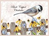 Wellspring Note Card, Toile Birds Black Capped Chickadee (6692)