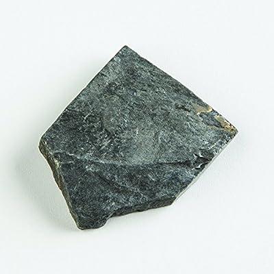 EISCO Carbonaceous Shale Specimen (Sedimentary Rock), Approx. 1