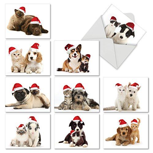 M6596XSB Christmas Copy Cats: 10 Assorted Blank Christmas Note Cards Featuring Adorable Puppies and Kittens in Matching Santa Hats for Christmas, w/White Envelopes.