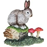 Nature British Wildlife Motif lapin