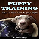 Puppy Training: How to Train Your Puppy Right! |  MAV4LIFE