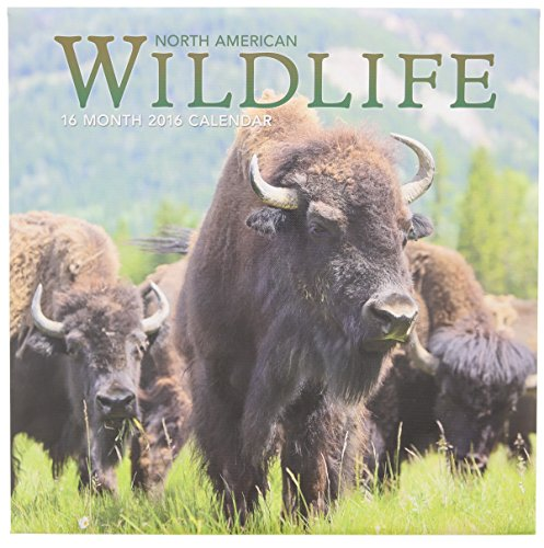 2016 North American Wildlife 16 Month Wall Calendar