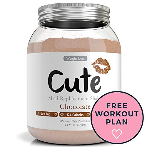 Weight Loss Shakes For Women - Chocolate Protein Based Meal Replacement Powder - Keeps You Healthy and Full - Packed with Nutrients - 3 Delicious Flavors - Great Tasting Diet Control Drinks - 1.1lbs