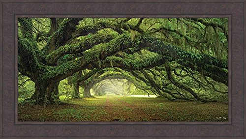 Home Cabin Décor Passage by Moises Levy 24x42 Avenue Of Oaks Charleston SC Plantation Trees Spanish Moss Tree Tunnel Photo Framed Art Print Picture