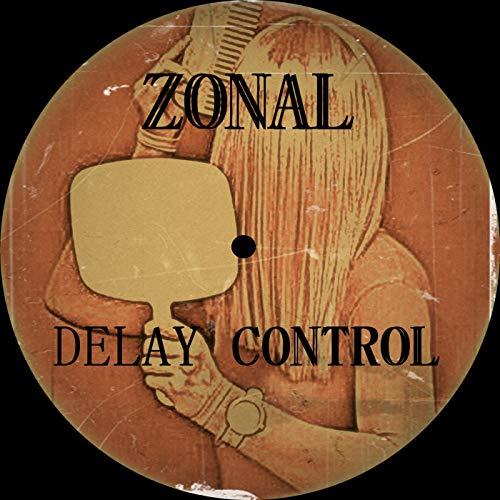 (Delay Control)