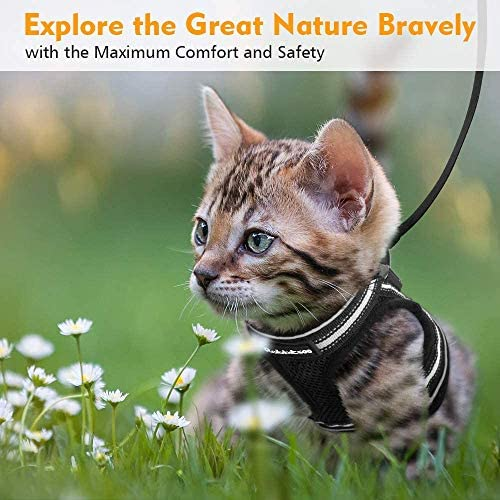 rabbitgoo Cat Harness and Leash Set for Walking Escape Proof, Adjustable Soft Kittens Vest with Reflective Strip for Cats, Step-in Comfortable Outdoor Vest 29