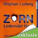 Zorn: Lodernder Hass (Zorn 7) Hörbuch von Stephan Ludwig Gesprochen von: David Nathan