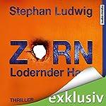 Zorn: Lodernder Hass (Zorn 7) | Stephan Ludwig