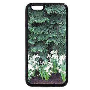 iPhone 6S Plus Case, iPhone 6 Plus Case, Portrait of Flowers 23