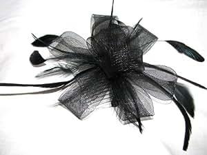 Negro de canasta de lazo en la isla japonesa de plumas peine transparente